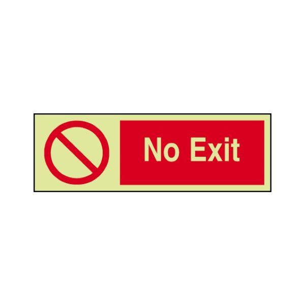 No exit Photoluminescent